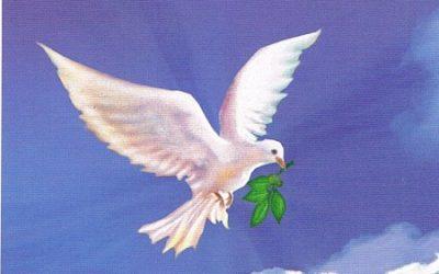 Peace In
